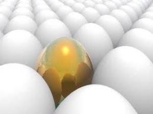 Wat voor een ei bent u? Resultaten