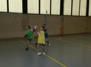 Zwerkbal in de praktijk
