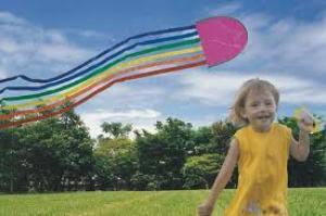 Vliegerfeest in de praktijk